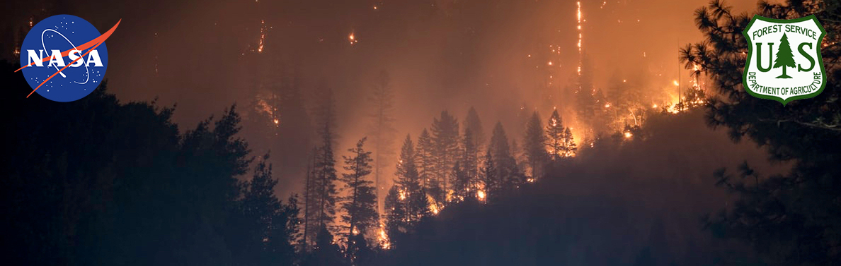 A photograph of a forest wildfire